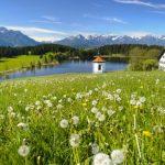 Bayerischer Immobilienmarkt weiter im Hoehenflug